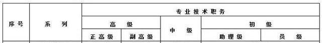 审计师落户上海