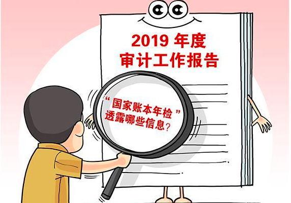 国家账本年检:2019年度中央预算执行和其他财政收支的审计工作报告出炉
